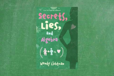 "Book cover for ""Secrets, Lies, and Algebra"""